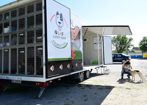 Stérilisation animaux errants à AKSAKOVO - 30 mai au 8 juin 2018 Cliniq14