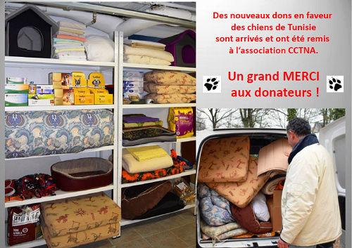 Don d'argent au profit des animaux de CCTNA Dons_l10