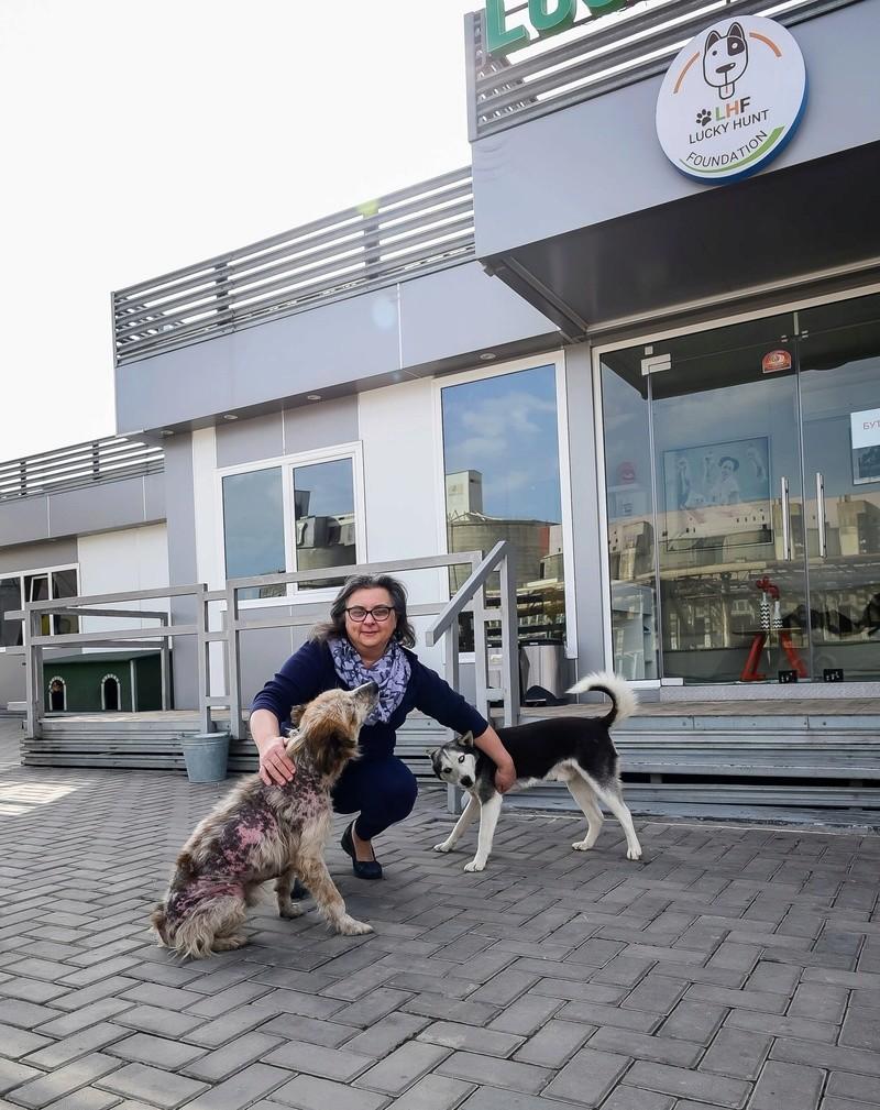 Campagne de stérilisation des chiens errants - PROVADIA - avril 2018 Lef_lh10