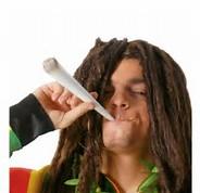 possible interdiction du glyphosate - Page 5 Fumeur10