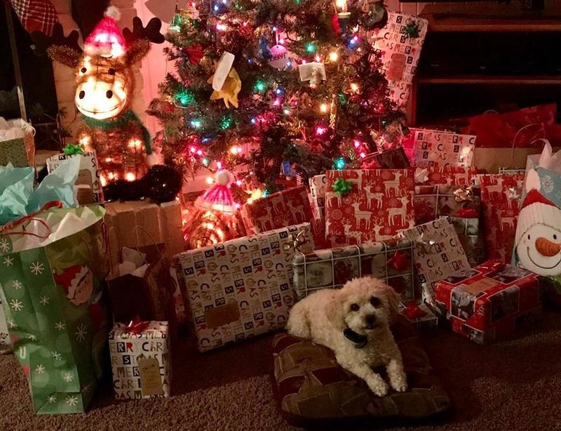 How was everyone's Christmas? Christ13