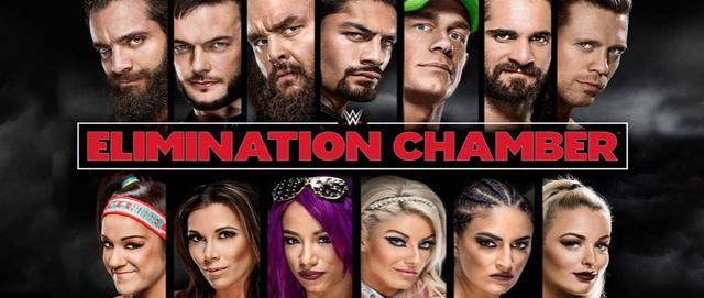 WWE Elimination Chamber du 25/02/2018 Elimin11