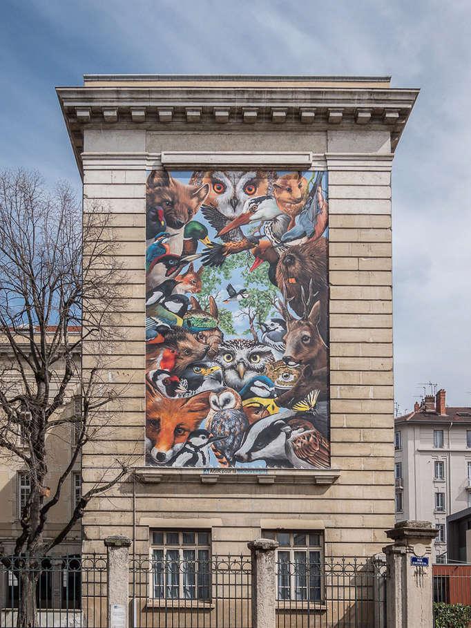 Street art lyonnais...et M.Paul Street10