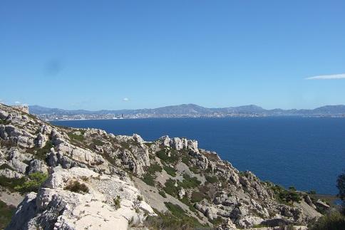 La Côte Bleue, à l'ouest de Marseille - flore et paysages Dscf2710