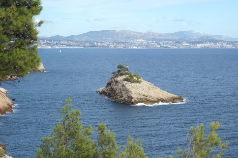 La Côte Bleue, à l'ouest de Marseille - flore et paysages Dscf2711