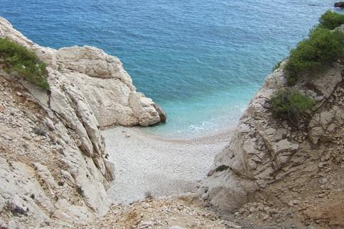 La Côte Bleue, à l'ouest de Marseille - flore et paysages Dscf2712