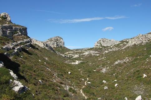 La Côte Bleue, à l'ouest de Marseille - flore et paysages Dscf2713