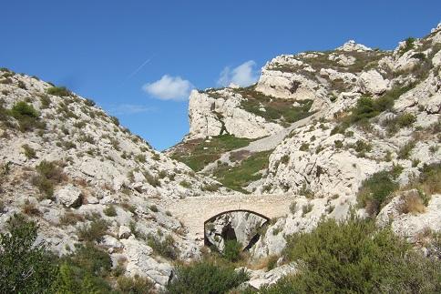 La Côte Bleue, à l'ouest de Marseille - flore et paysages Dscf2714