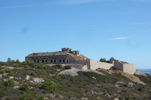 La Côte Bleue, à l'ouest de Marseille - flore et paysages Dscf2715