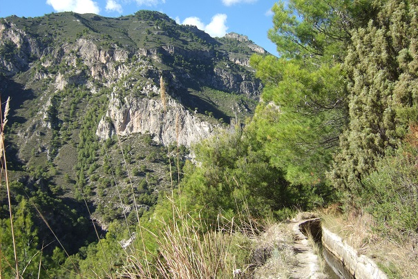 Espagne - Andalousie Dscf3413