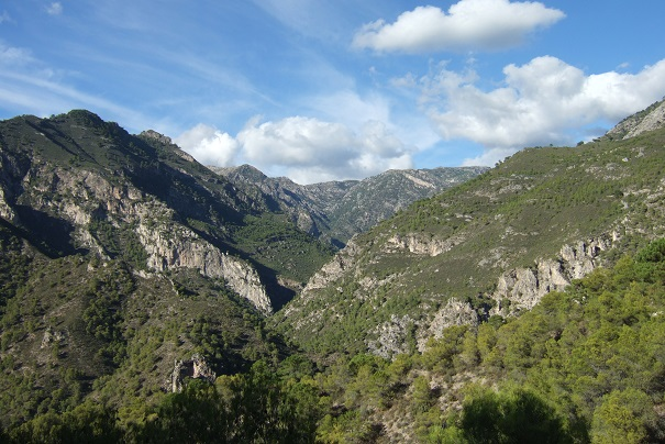 Espagne - Andalousie Dscf3415