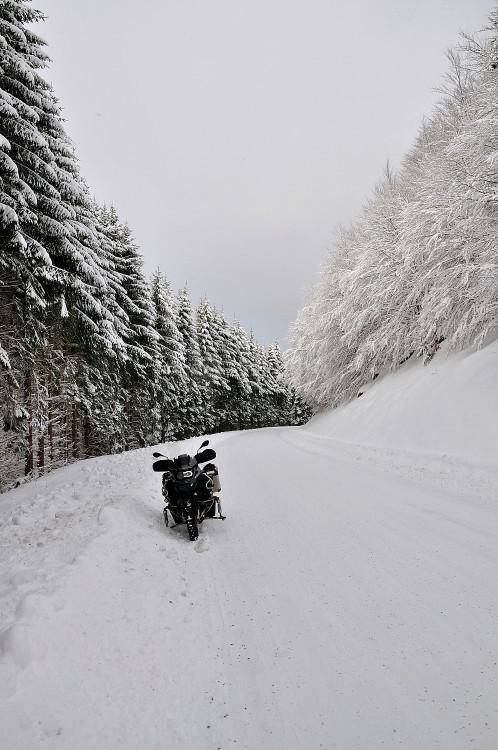 Quelques photos de neige bien sûr ! Redimr46