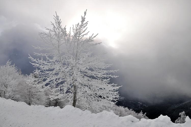 Quelques photos de neige bien sûr ! Redimr47