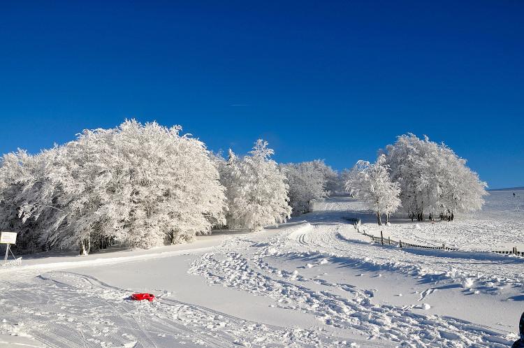 Quelques photos de neige bien sûr ! Redimr50