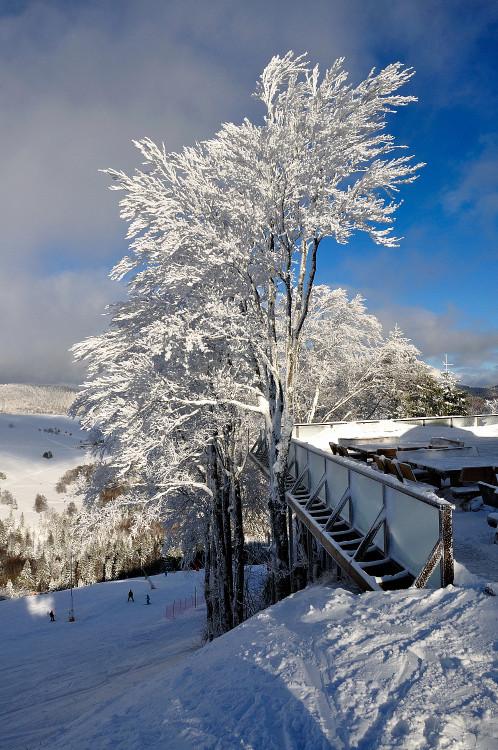 Quelques photos de neige bien sûr ! Redimr54