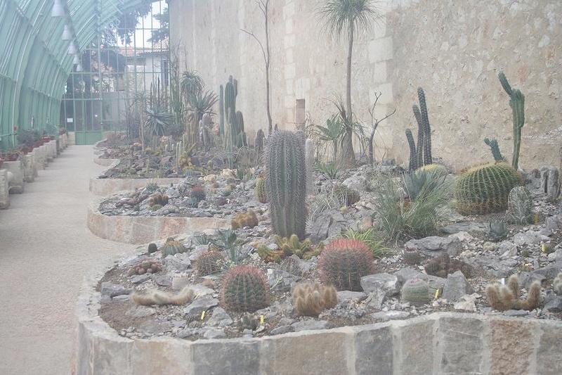 """Déficoncours """"Jardins sous verre"""" - Participations 544_4410"""