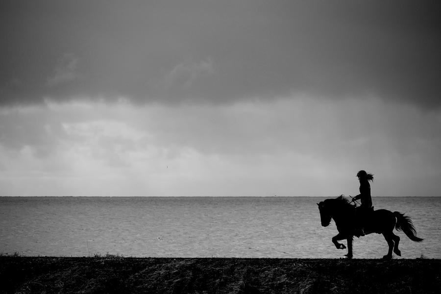 Paysages noir et blanc. P1070215