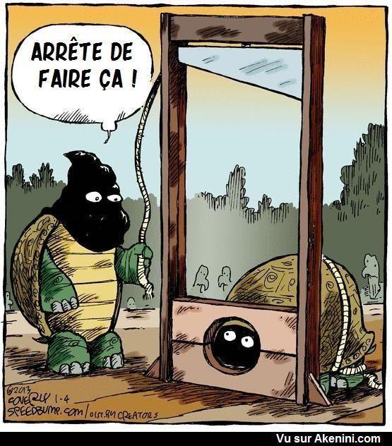 images humour  59ea0610