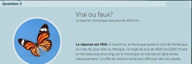 VRAI ou FAUX - Page 2 Copie_30