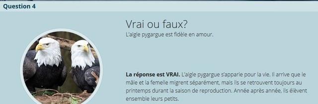 VRAI ou FAUX - Page 2 Copie_31