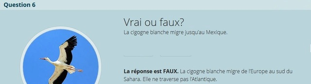 VRAI ou FAUX - Page 2 Copie_34