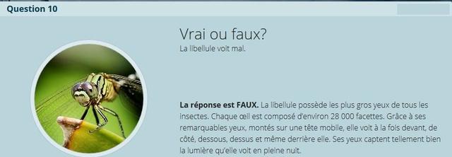 VRAI ou FAUX - Page 2 Copie_39