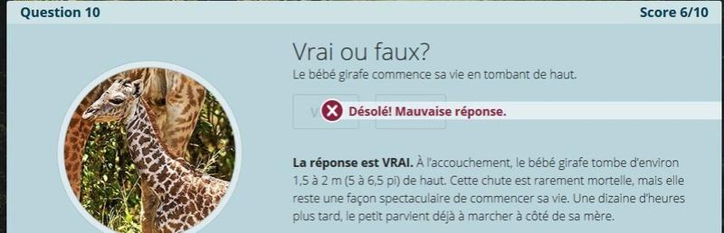 VRAI ou FAUX Nc10_a10