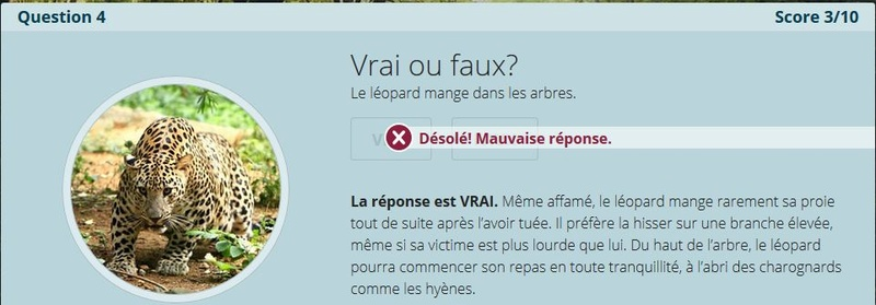 VRAI ou FAUX Nc4_a_10