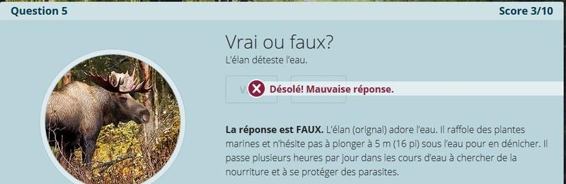 VRAI ou FAUX Nc5_a11