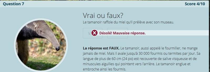 VRAI ou FAUX Nc7_a_10