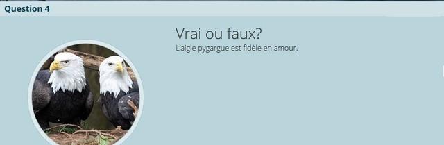 VRAI ou FAUX - Page 2 V-f_n410