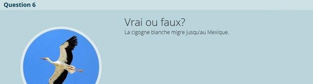 VRAI ou FAUX - Page 2 V-f_n610