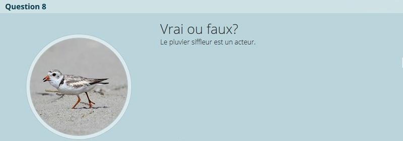 VRAI ou FAUX - Page 2 V-f_n810