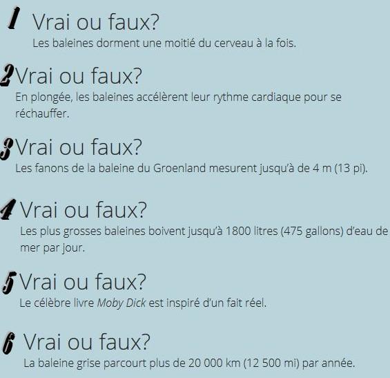 VRAI ou FAUX Vf10