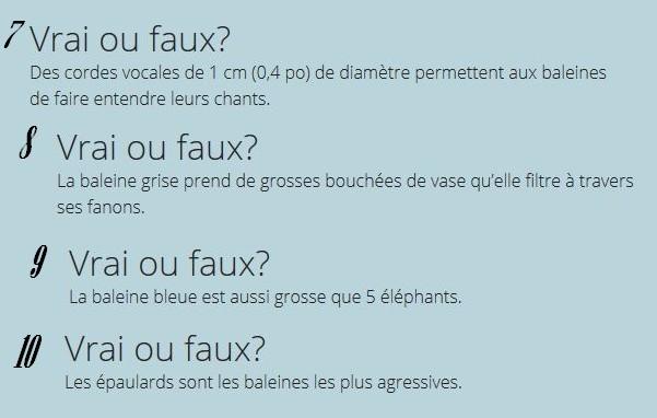 VRAI ou FAUX Vf_211