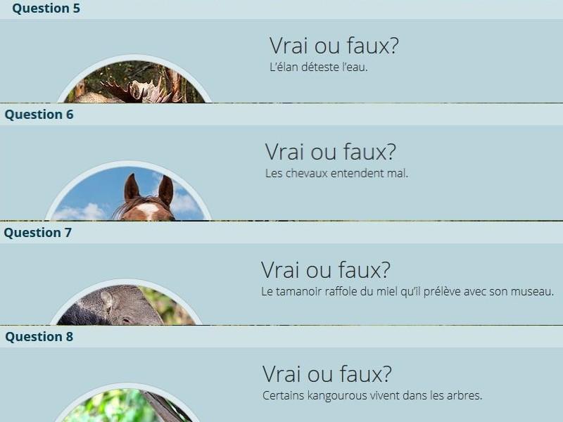 VRAI ou FAUX Vf_212