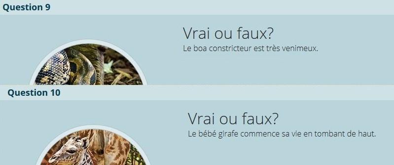 VRAI ou FAUX Vf_310