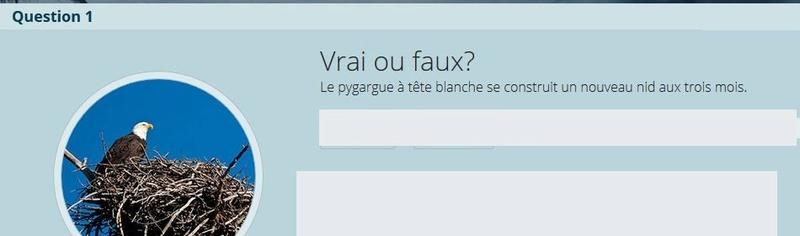 VRAI ou FAUX - Page 2 Vrai_f10