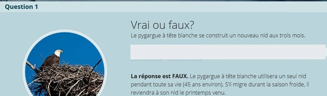 VRAI ou FAUX - Page 2 Vrai_f13