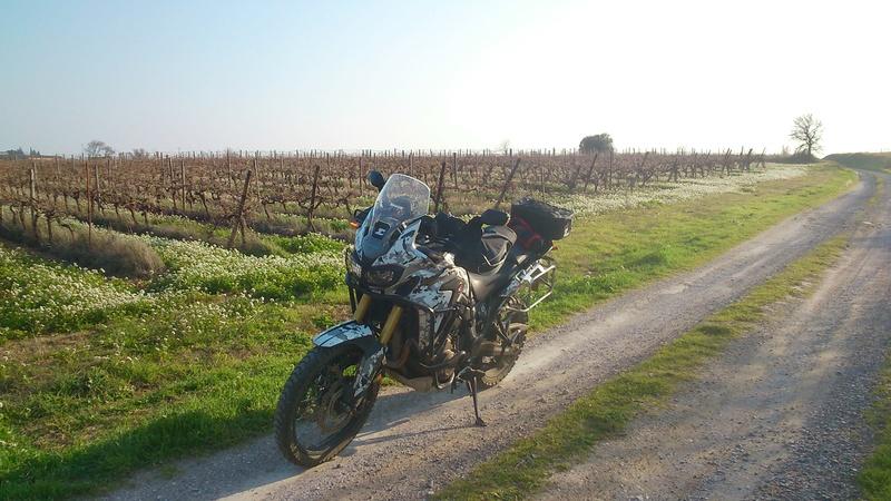 Vos plus belles photos de motos - Page 31 Dsc_0610