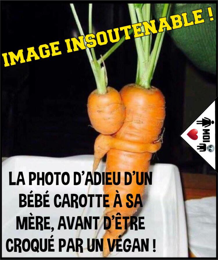 Special vegan !!!!  - Page 4 32457910