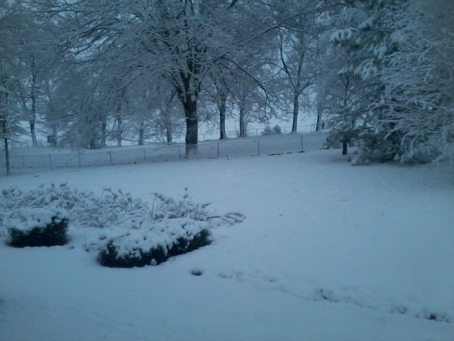 neige  - Page 2 Photo053