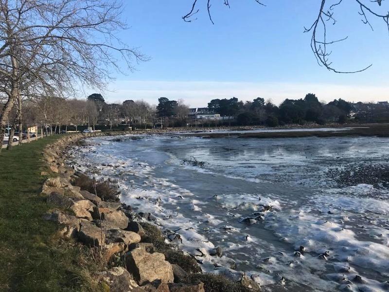 mer geléee a conleau vannes Conlea10