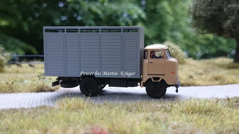 W50 Viehtransporter - Seite 2 Dsc_2411