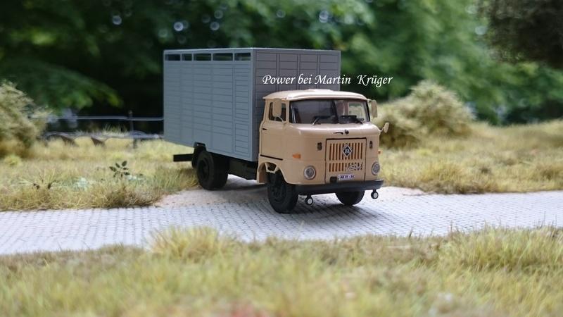 W50 Viehtransporter - Seite 2 Dsc_2412