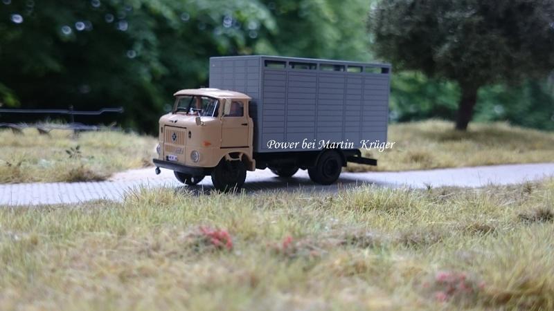 W50 Viehtransporter - Seite 2 Dsc_2413