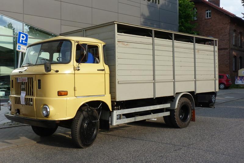W50 Viehtransporter - Seite 2 P1090410