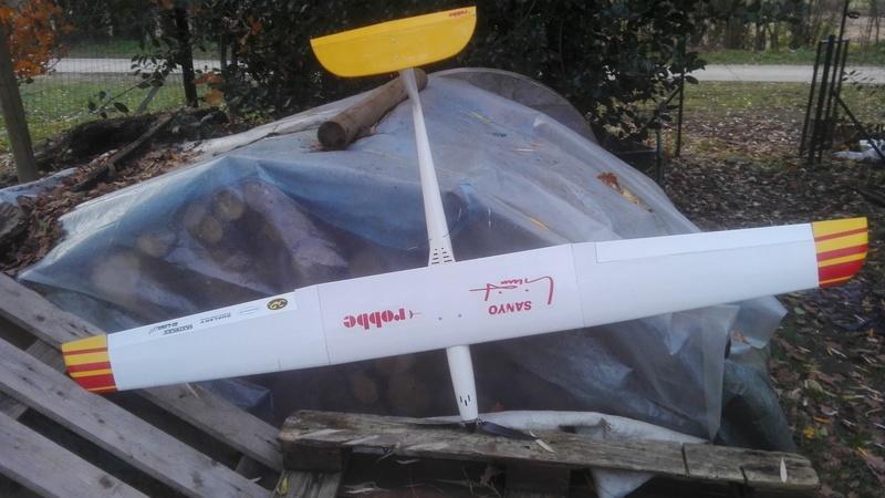 Vends Sayno Limit Robbe (Hotliner) Img_2025