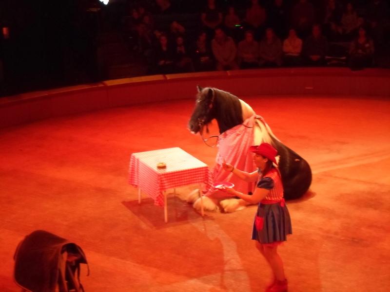 comme tous les ans , en 2018 cirque pour moi en janvier  Sam_2713