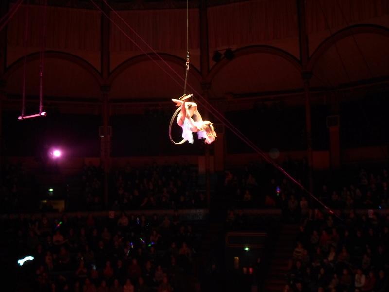 comme tous les ans , en 2018 cirque pour moi en janvier  Sam_2714
